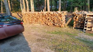 Green oak and maple for Sale in North Yarmouth, ME