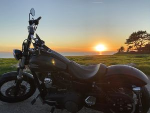 2016 Harley Davidson Dyna Streetbob for Sale in Culver City, CA