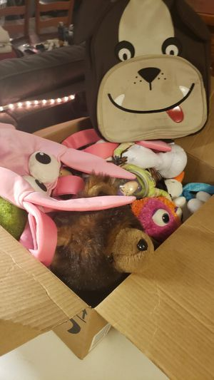 Box of stuffed animals for Sale in Bethany, OK