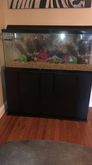 55 gallon tank, stand and accessories for Sale in Dale City, VA