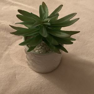 White Pot Green Plant Home Decor Piece for Sale in Nokesville, VA