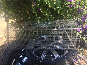 Animal trap for Sale in Salinas, CA