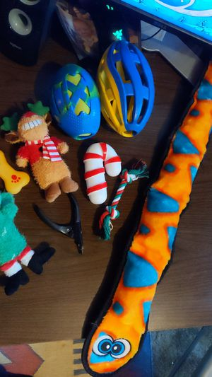Dog Toys & Supplies for Sale in VA, US