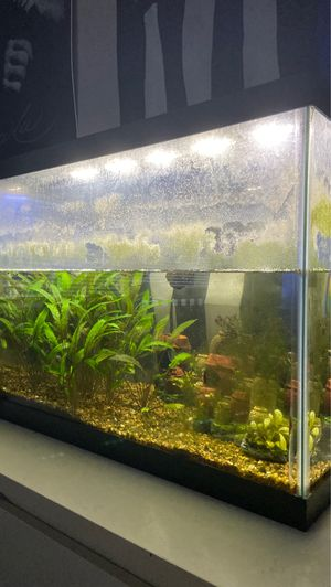 Fish tank for Sale in Costa Mesa, CA