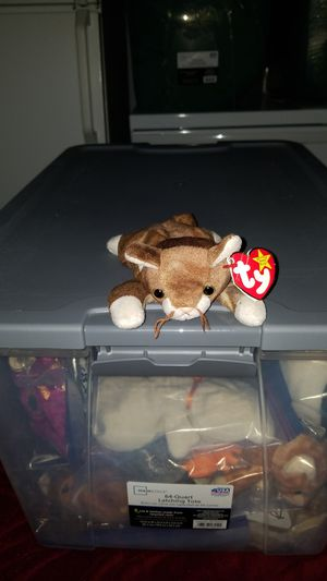 """TY Beanie Babies Original """"Pounce"""" for Sale in Lowell, MA"""