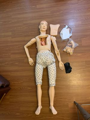 Anatomical Dummy (Great for Medical Students!) for Sale in San Antonio, TX