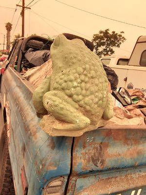 Frog fountain for Sale in Santa Clara, CA