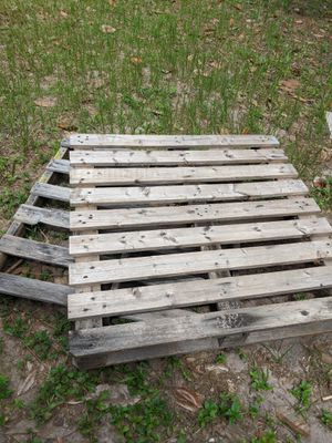 Two free pallets for Sale in Tampa, FL