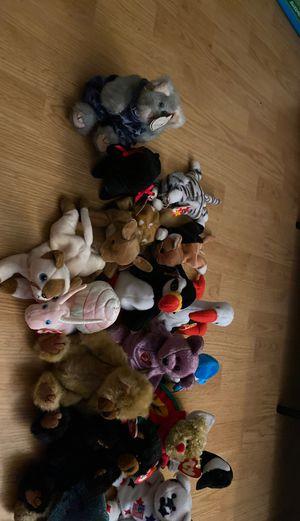 Beanie Babies-full lot for Sale in Philadelphia, PA