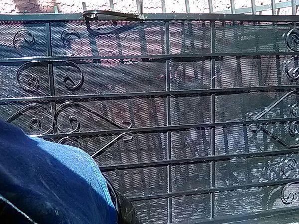 3-black screen security doors and iron security window bars