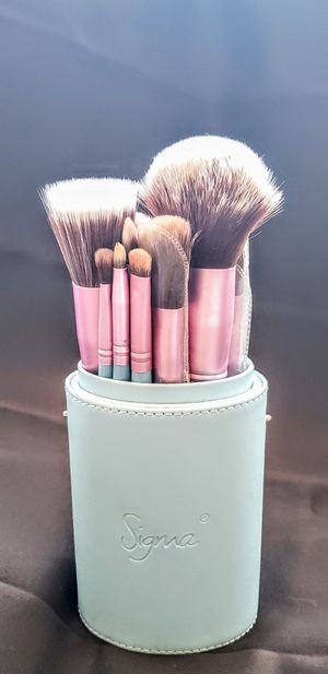 Professional 14pc Classy Makeup Brush Set for Sale in Tulsa, OK