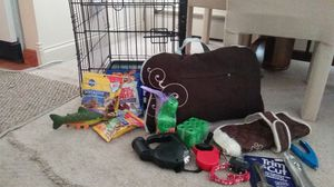 Small dog kit for Sale in Bloomfield Hills, MI