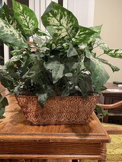 House Plants (fake) for Sale in Sunnyvale,  CA