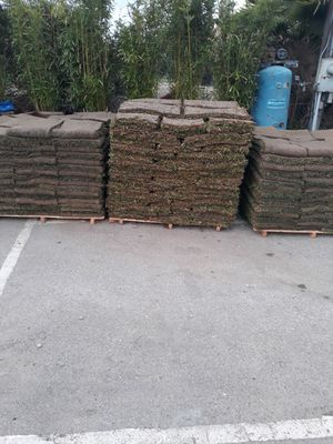 Sod for Sale in Compton, CA