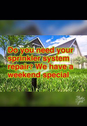 Sprinkler system for Sale in Orlando, FL