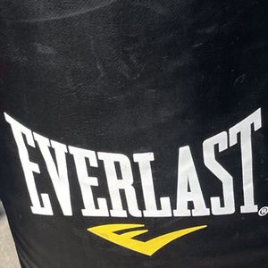 Punching Bag and Gloves for Sale in Los Gatos, CA