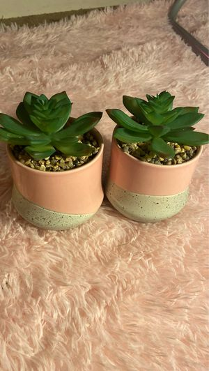 2 Fake Bedroom Plants for Sale in Gaithersburg, MD