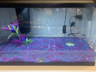 10 Gallon fish Tank With Filter And Gravel for Sale in Union City,  NJ