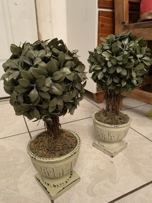 """2 Topiary On Pot (Artificial Plant) 16""""H x8""""x 8"""" $ 49 for both for Sale in Hurst, TX"""