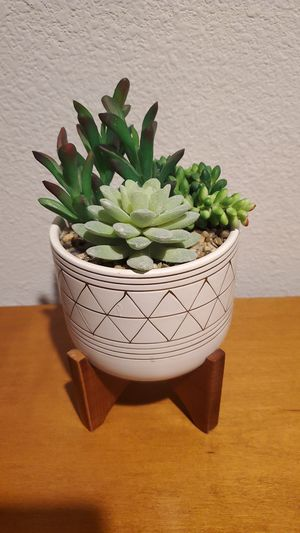 Faux succulent arrangement for Sale in Austin, TX