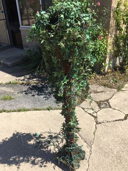 Lovely topiary tree for Sale in Clarendon Hills,  IL