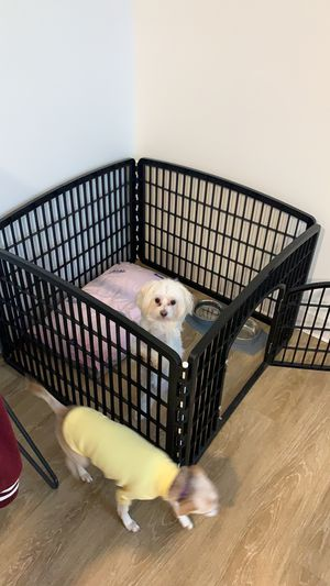 Playpen for dog for Sale in Boston, MA