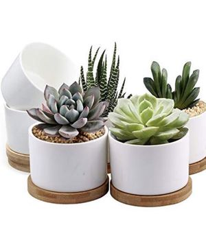Succulent Pots, White Mini 3.15 inch Ceramic Flower Planter Pot with Bamboo Tray, Pack of 6 - Plants Not Included for Sale in Tempe, AZ
