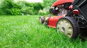 mowing for Sale in Parkersburg, WV