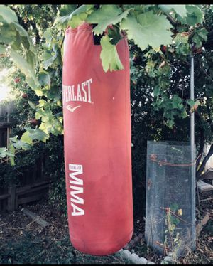Punching Bag for Sale in Sacramento, CA
