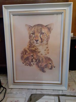 Vintage Cheetah w Cubs Pic for Sale in Pueblo, CO