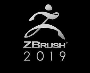 Z brush 2019 for Sale in Detroit, MI