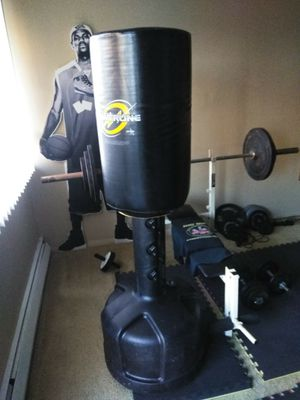 Punching Bag by Century- WaveMaster: PowerLine for Sale in Euclid, OH
