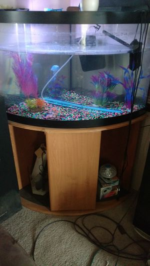 Bowfront aquarium for Sale in Evansville, IN
