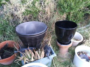 $8. Each flower pots. One is plastic. Both are painted for Sale in Phoenix, AZ