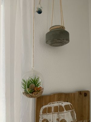 Succulent hanging decor (buy separately or all together) for Sale in Portland, OR