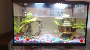 Fish Tank / aquarium and fish decorations for sale for Sale in Alpharetta, GA
