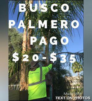 PLMERO for Sale in Phoenix, AZ