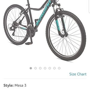 Schwinn Female Mountain bike for Sale in Buffalo, NY