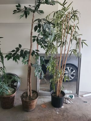 Fake tree plants for Sale in Florissant, MO