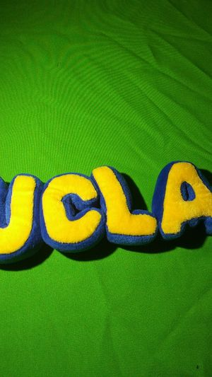 UCLA plush for Sale in Hemet, CA