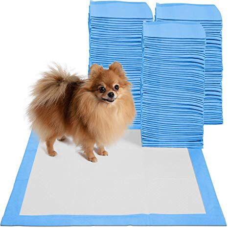 New in box 200pcs 24x24 inches pet wee pee piddle pad pet house training pads