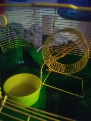 Hamster cage for Sale in Somerset, WI