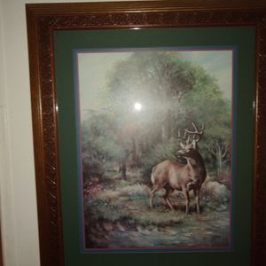A Deer Picture for Sale in Greenbrier, AR