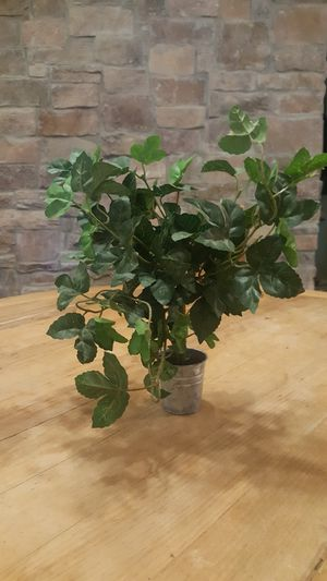 Decorative artificial plant for Sale in Chandler, AZ