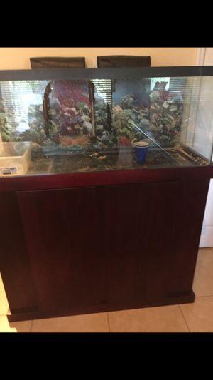 Aquarium for Sale in Coral Gables, FL