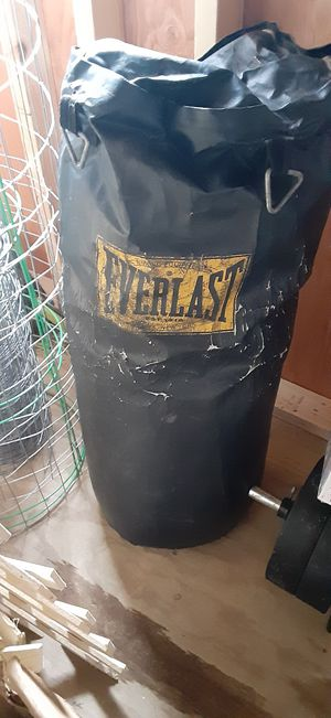 Everlast punching bag for Sale in Delmar, MD