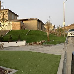 Turf Grass ,sod ,concrete for Sale in Riverside, CA
