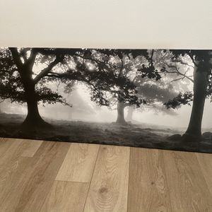 B&W Printed Canvas for Sale in Winchester, CA