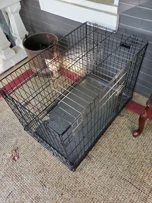 Collapsible dog crate for Sale in Washington, DC