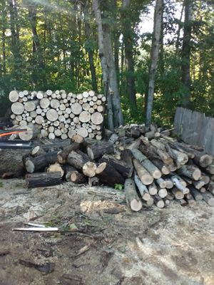 Seasoned ashed fire wood for Sale in Brant, MI